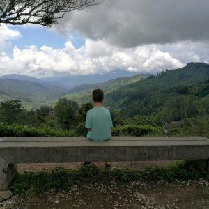 Mindful hoogsensitief gevoelig theevelden