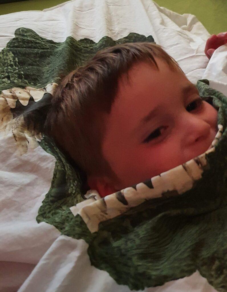 Dino dekbed overtrek SNURK
